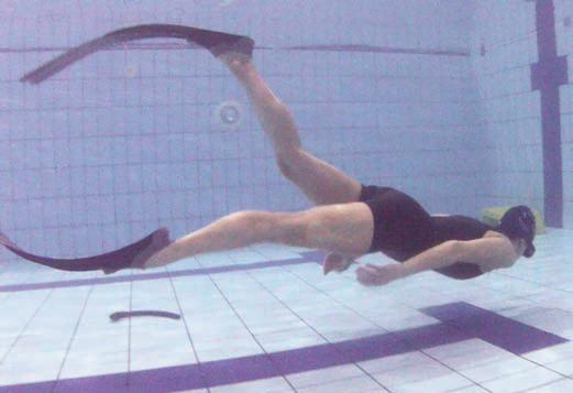 Allenamenti apnea roma sud eur. piscina wellness town